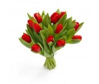 11 красных тюльпанов (11 - 101)