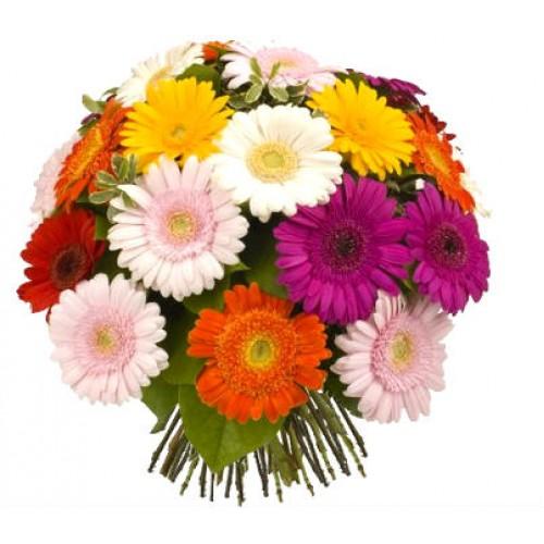 Букет из 19 разноцветных гербер