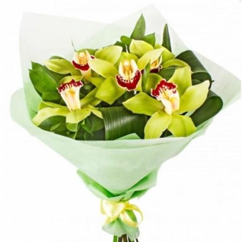 Букет из 9 зелёных орхидей