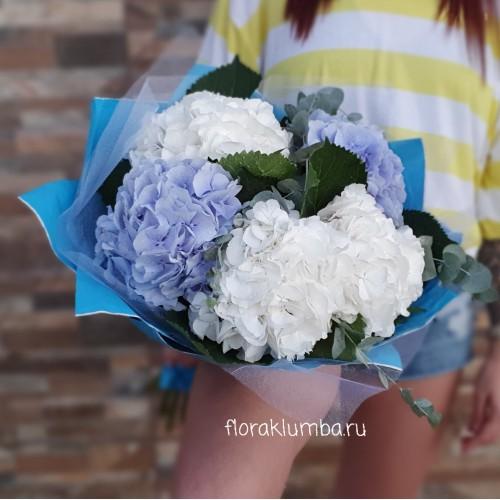 Букет из белой и голубой гортензии
