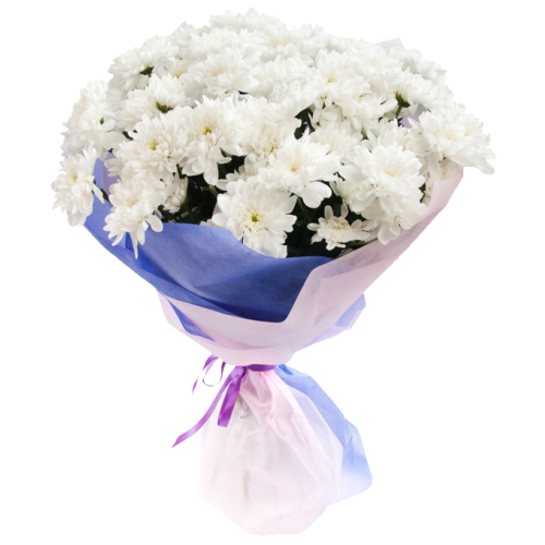 Букет из белых кустовых хризантем (11 — 101)