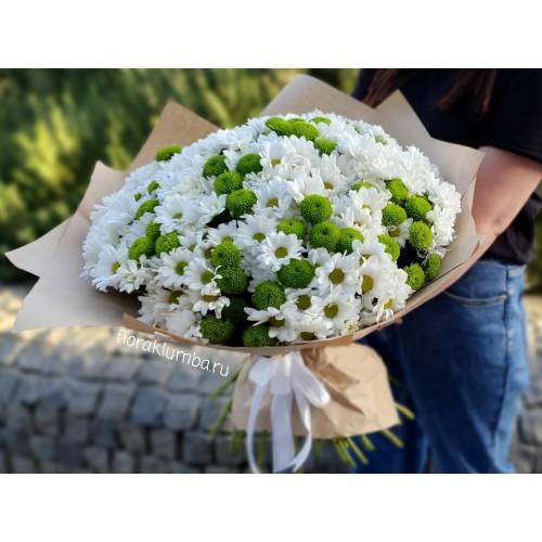 Букет из кустовых хризантем (9 — 101)