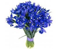 Букет из синих ирисов (11-101)