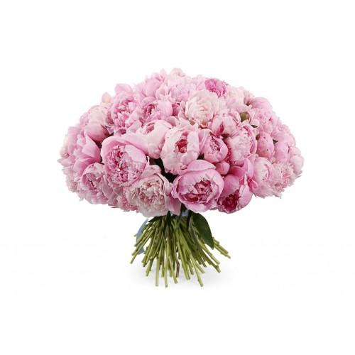Букет из розовых пионов (11 - 101)