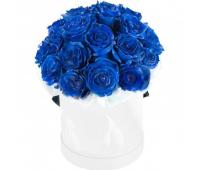 Синие розы в белой коробке (15, 25, 35, 51)