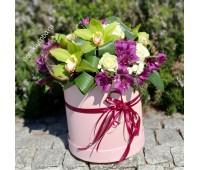 Шляпная коробка с орхидеей цимбидиум