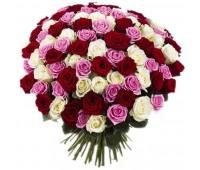 101 красная, белая и розовая крымская роза