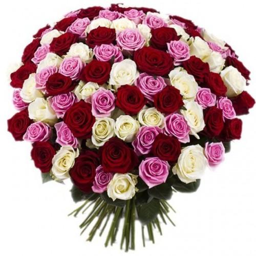 101 красная, белая и розовая роза