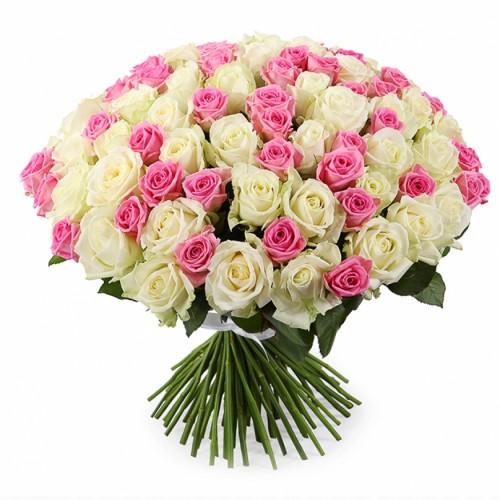 101 белая и розовая крымская роз