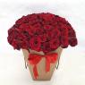 101 голландская красная роза в коробке