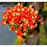 Оранжевая кустовая импортная роза (60  см)