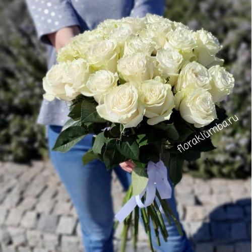 25 голландских белых роз