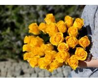 Жёлтая импортная роза