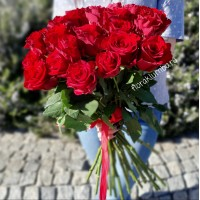 25 красных голландских роз