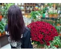 101 красная крымская роза