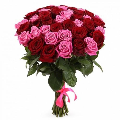 25 розовых и красных голландских роз