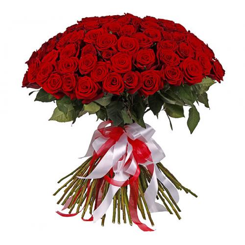 51 голландская красная роза