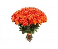 51 голландская оранжевая роза