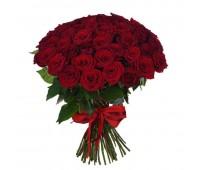 51 красная крымская роза