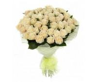 51 крымская кремовая роза