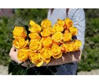 25 жёлтых крымских роз
