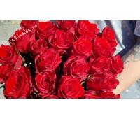 Красная голландская роза