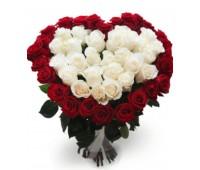 Сердце из 51 красной и белой голландской розы