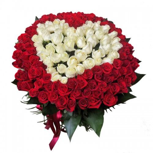 Сердце из 101 голландской красной и белой розы