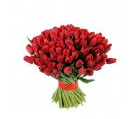 101 красный тюльпан (51, 31)