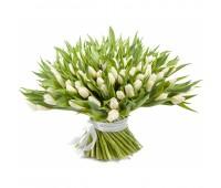 101 белый тюльпан (от 11 до 101 шт)