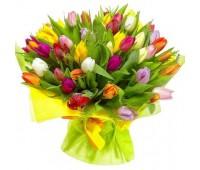 """101 тюльпан """"Яркий микс"""" (от 11 до 101 шт)"""