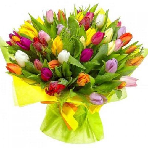 """101 тюльпан """"Яркий микс"""" (51, 31)"""