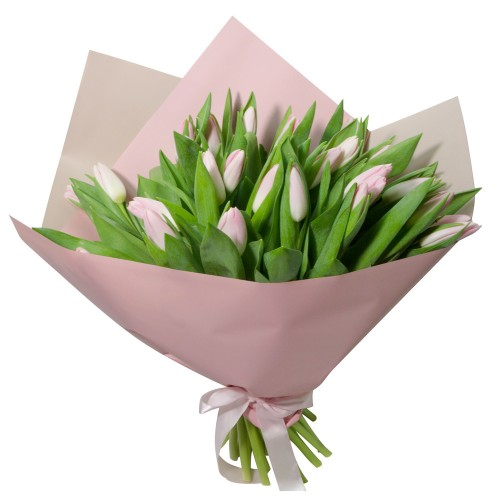 31 розовый тюльпан (11 - 101)