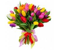 """31 тюльпан """"Весенний микс"""" (11 - 101)"""