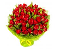 51 красный тюльпан (11 - 101)
