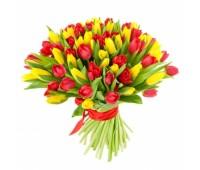 51 красный и жёлтый тюльпан (11- 101)